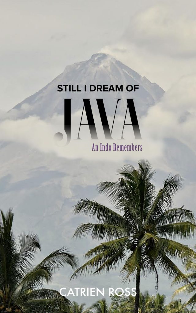 Still I Dream of Java by Catrien Ross